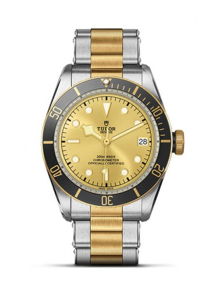 TUDOR BLACK BAY S&G REFERENCE:M79733N-0004